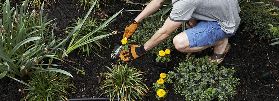 bricolage et jardinage dans le var 83 allo services emplois famillaux 83000 toulon. Black Bedroom Furniture Sets. Home Design Ideas